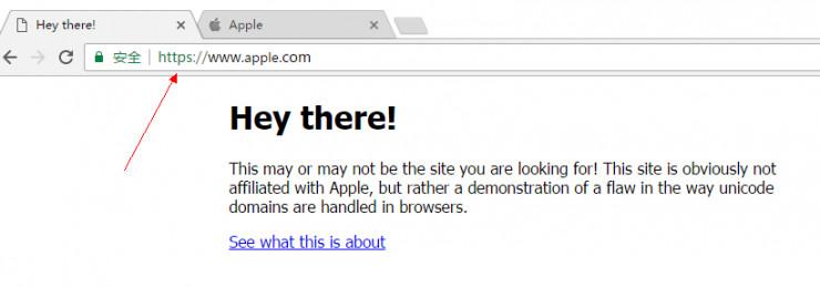 给你介绍一个假的苹果网站,能肉眼看出来算我输!